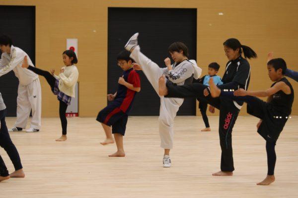 TAEKWONDO Fukuoka TERIHA ~Reclutando Los participantes!! De adultos a niños