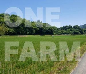 ONE FARMの今