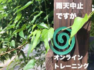 雨天中止→オンラインTR