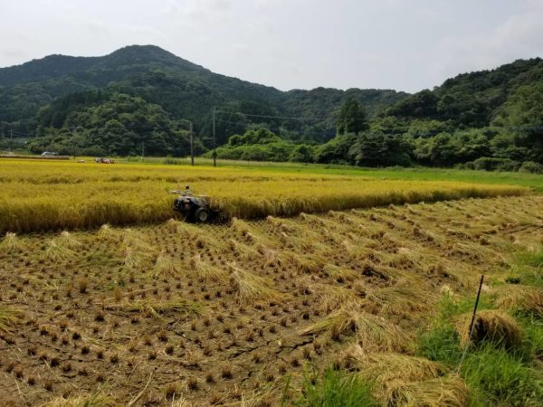 ONE FARM お米ご注文